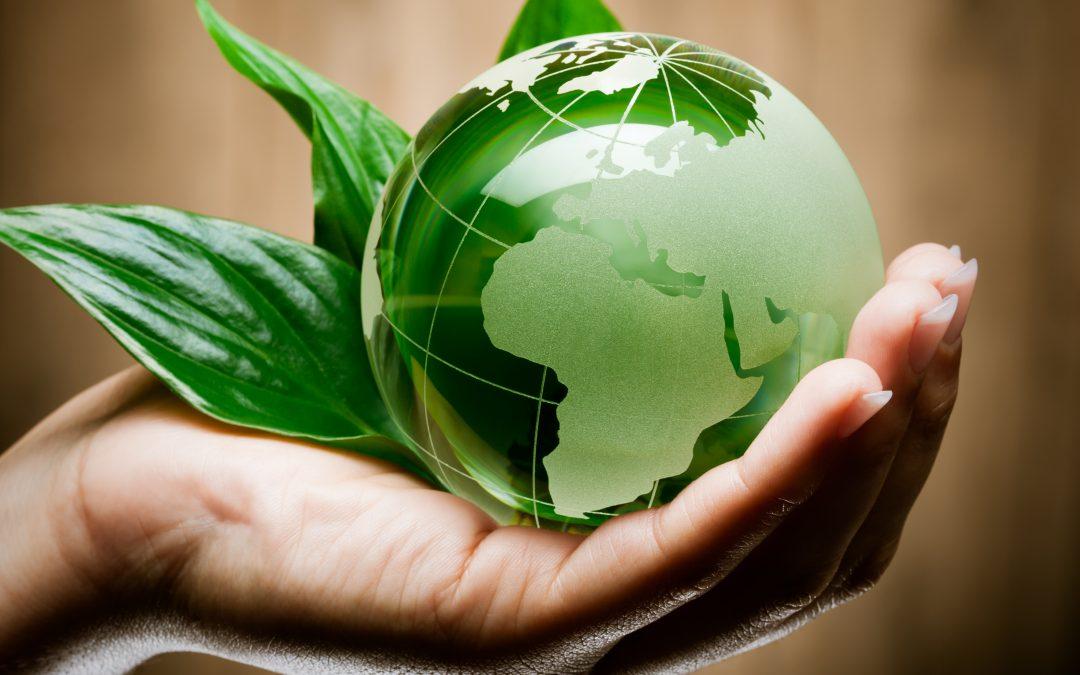 CILE: accordo con la UE sul commercio di prodotti biologici