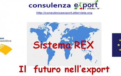 Dogane, nuovi chiarimenti sul sistema REX
